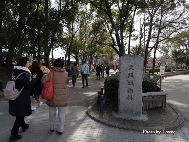 大阪城梅林石標