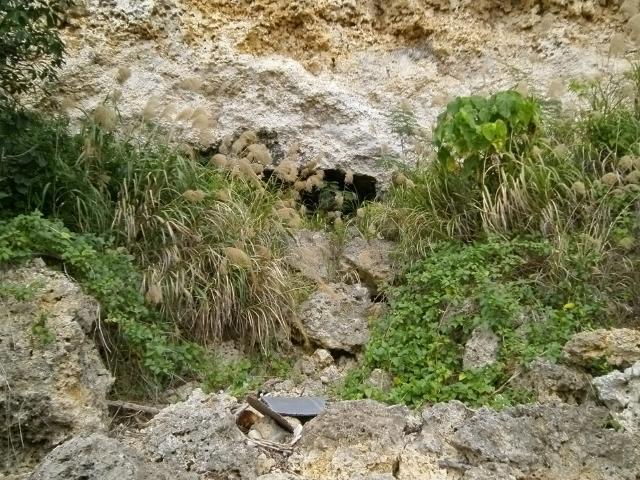 比謝川の震洋壕 (2)