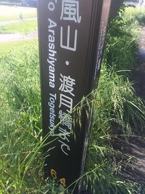 京都自転車道30 (15)