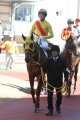 170303 静内農業高校生産馬 デビュー勝ち-01