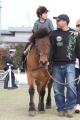 170407 木曽馬&ミニチュアホース-02