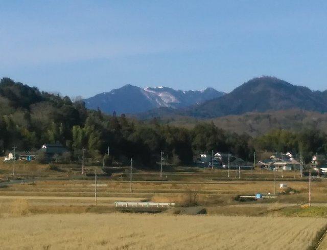 290219izumi2.jpg