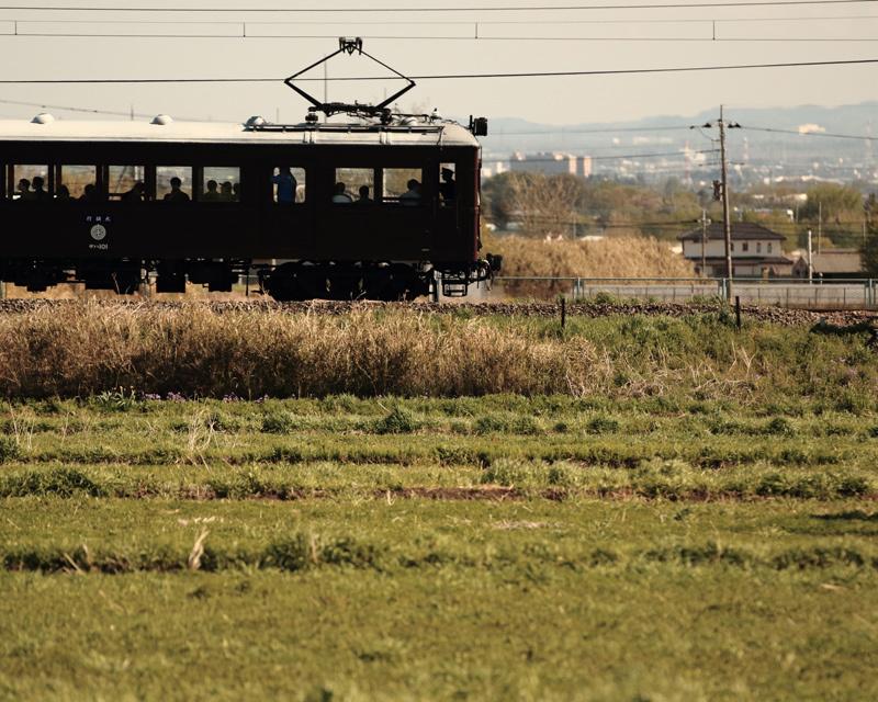 ED5A6565.jpg