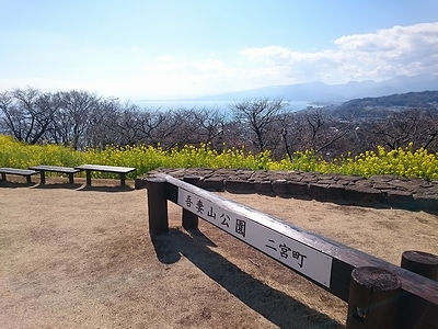 yuhie846 (6)