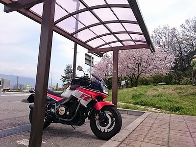 yuhige984 (1)