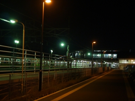 P1620557.jpg