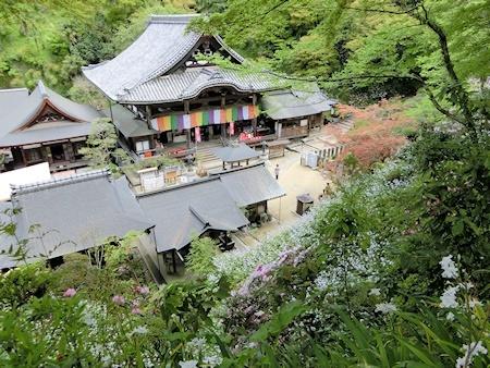本堂(三重宝塔近くから)