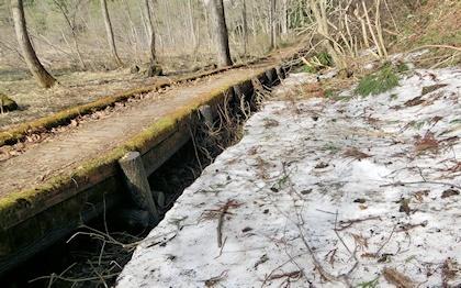 親海湿原残雪