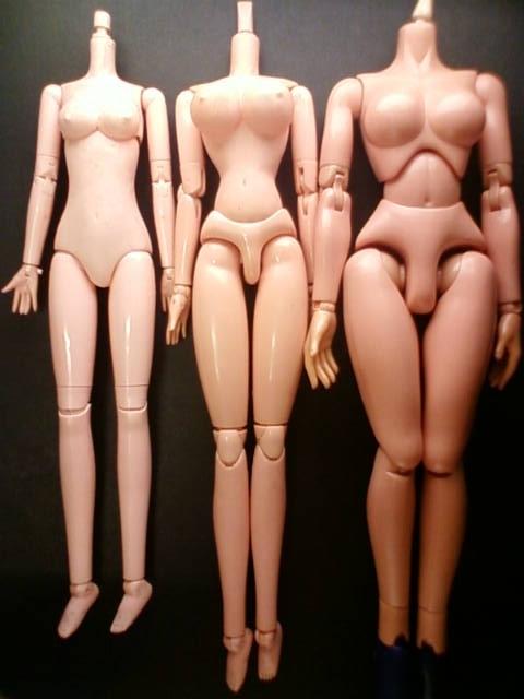 body_c.jpg