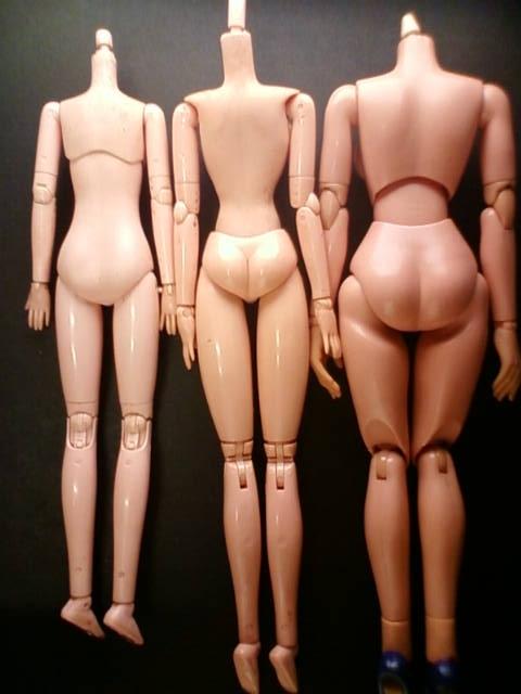 body_d.jpg