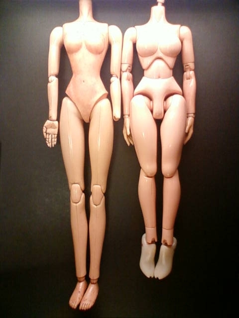 body_g.jpg