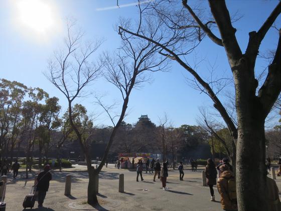 大阪城公園梅林2017-04