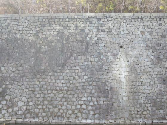 石垣ときどき梅林05