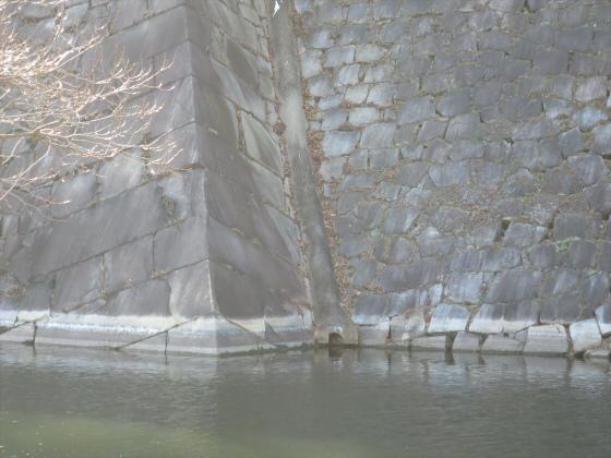 石垣ときどき梅林08
