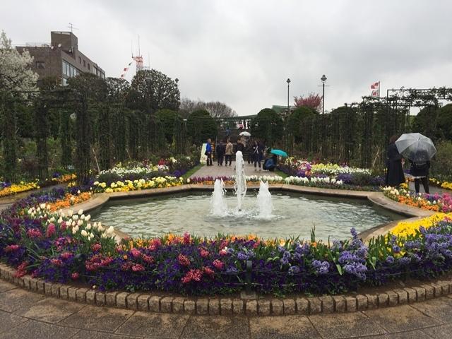 きれいな庭