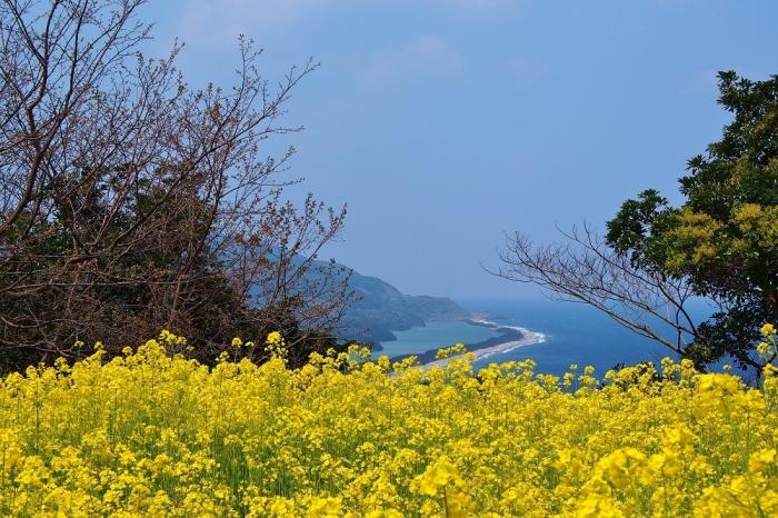 長目の浜の風景 1