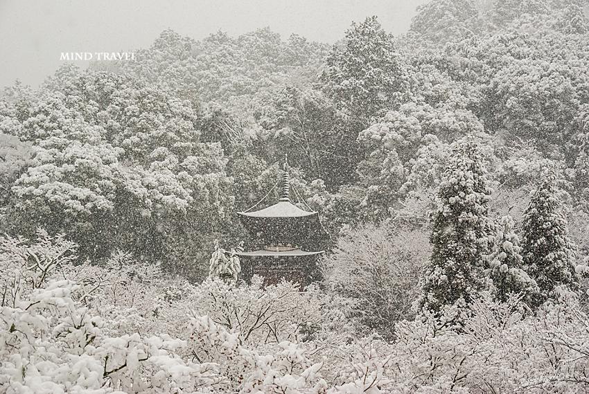 永観堂 雪4