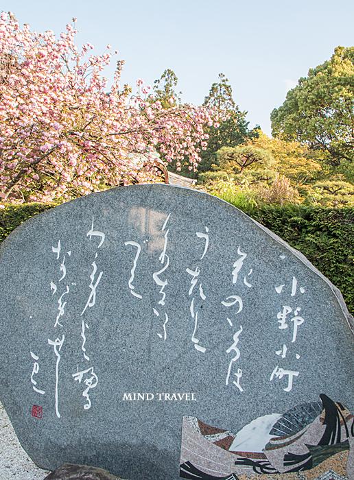 髄心院 歌碑 八重桜