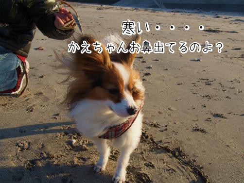 IPWDI8Osうーみー12
