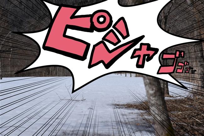 DSC_8263うぇr