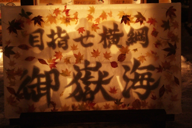 B20170203B_雪灯りの散歩路_メイン会場_IMG_1941
