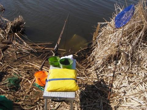 手賀川での釣り座