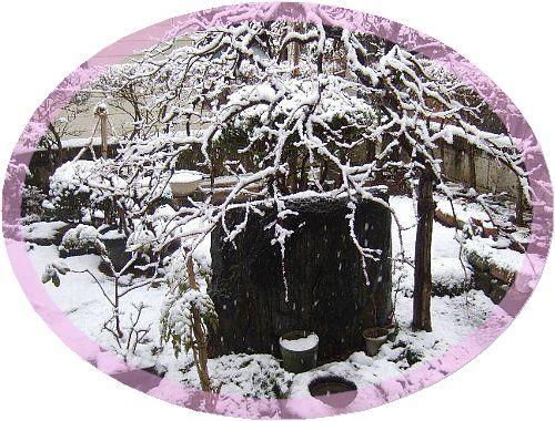 3月27日朝の雪004