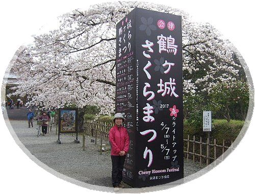 鶴ヶ城の桜005