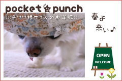pocket★punchへ