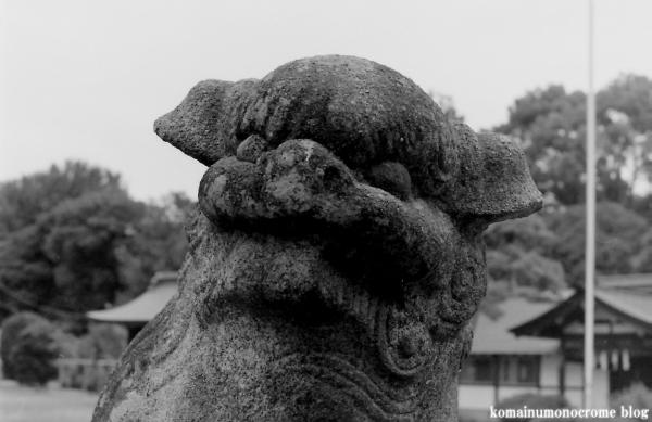 秋葉神社(さいたま市西区中釘)4