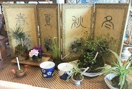 花あそび庭あそび展 (5)