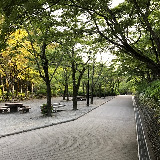 公園-2-400