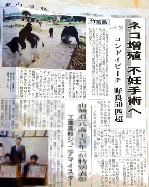 八重山日報竹富猫不妊手術20170301_s