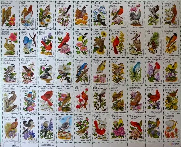 アメリカ鳥&花シート
