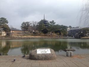 sarusawa0221_convert_20170221121107.jpg