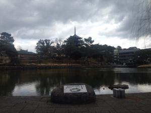 sarusawa0303_convert_20170303114354.jpg