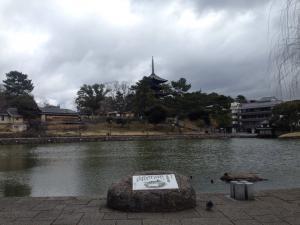 sarusawa0315_convert_20170315105958.jpg