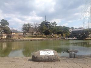 sarusawa0322_convert_20170322111700.jpg