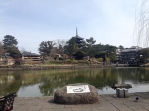 sarusawa0325_convert_20170325110608.jpg
