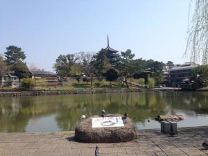 sarusawa0414_convert_20170414115824.jpg
