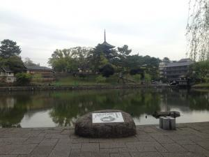 sarusawa0421_convert_20170421120456.jpg