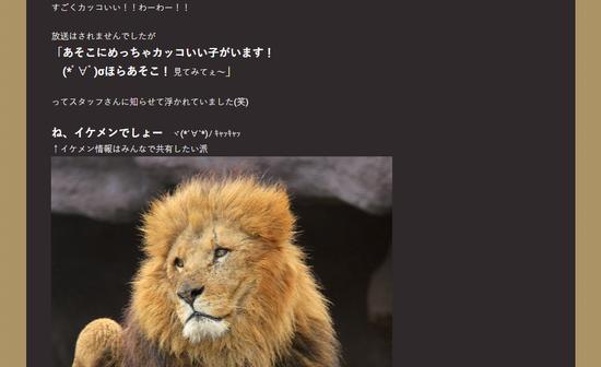 ライオン_1465_リンク_5