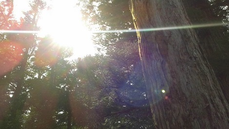 8太陽(2)