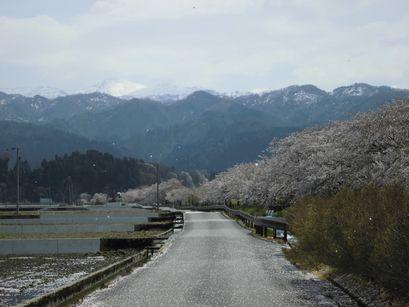 asakura0416-17.jpg