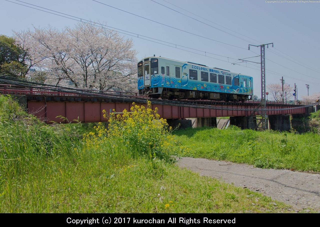BSF_5421-2.jpg