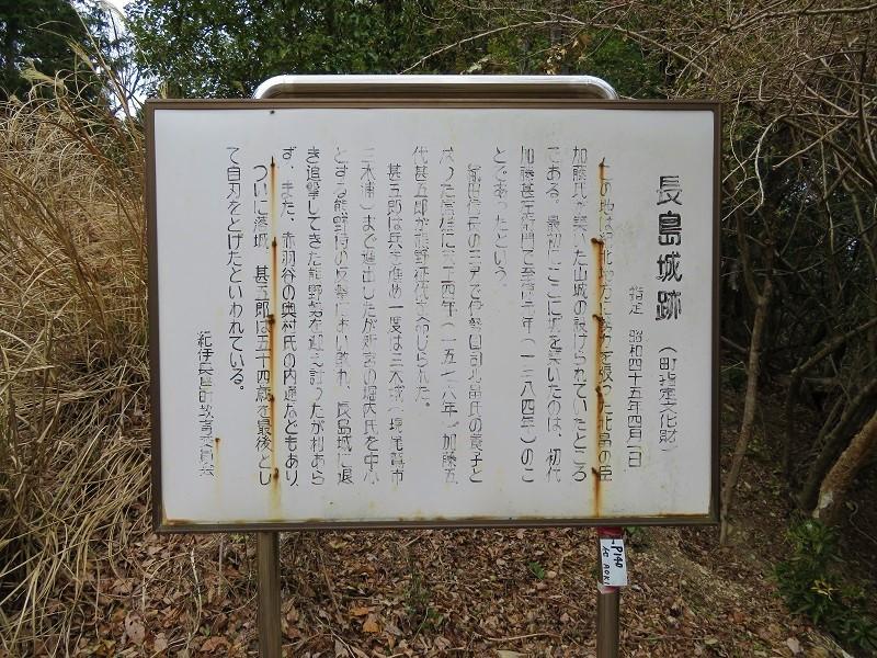 kiinagasima (16)
