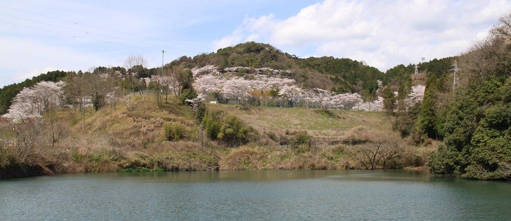 kaneyama (11)