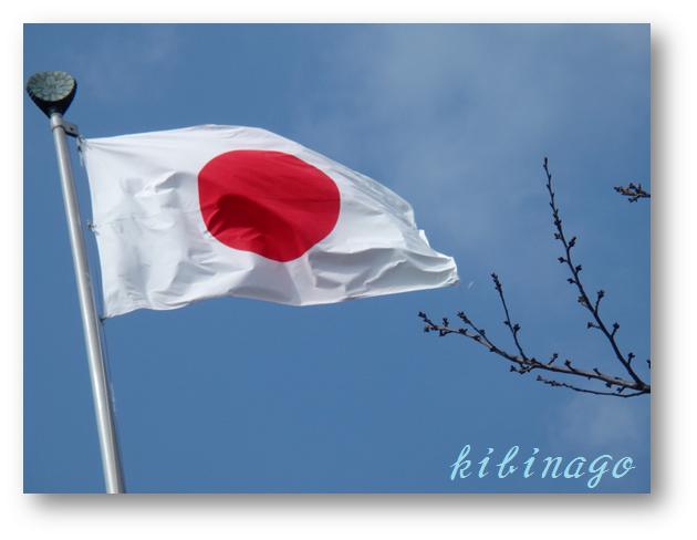 2017年2月21日 日の丸と桜