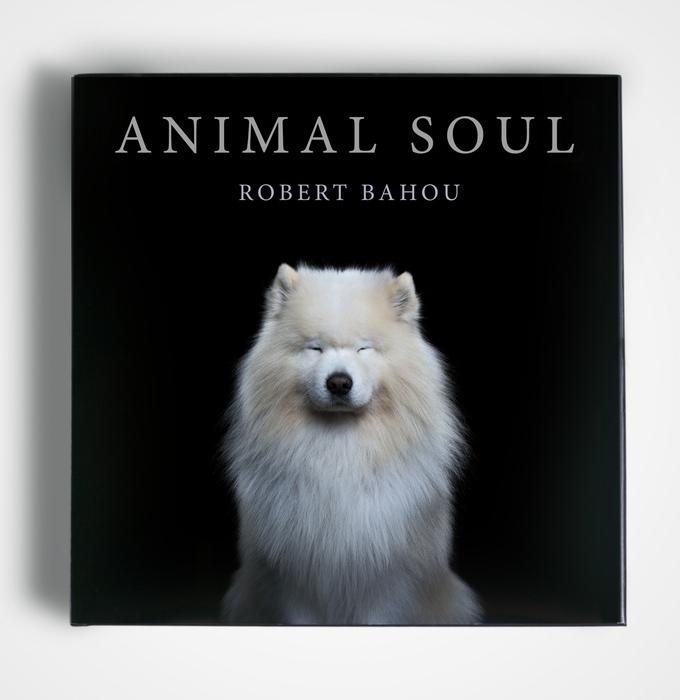 AnimalSoul2.jpg