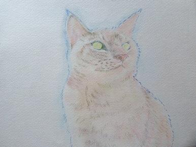 お絵かき始めました。